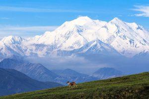 ヘッダー画像_mountain